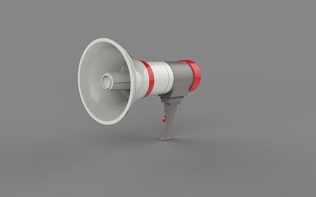 blaze portable speaker instruction 42256298