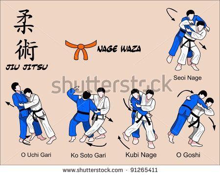 Brazilian jiu jitsu moves pdf